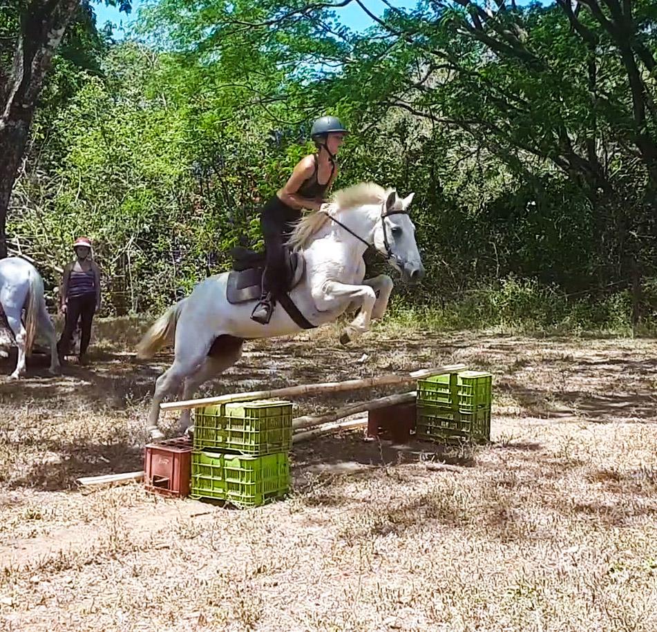 salto de obstaculo