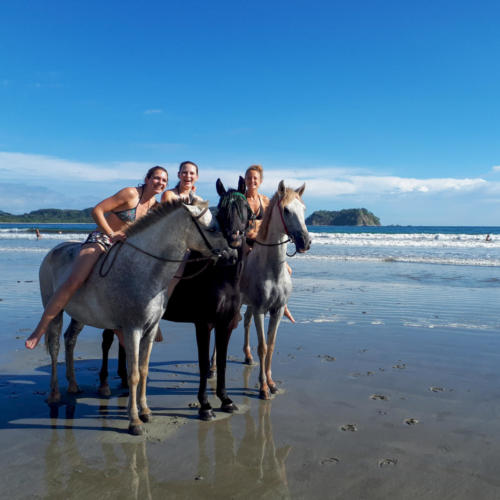 Randonnée cheval plage costa rica